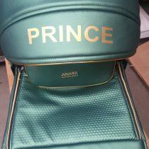 Personalizare logo Prince